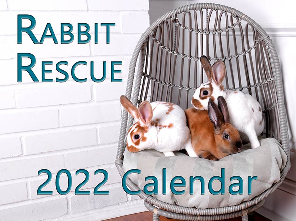 rabbit rescue calendar cover