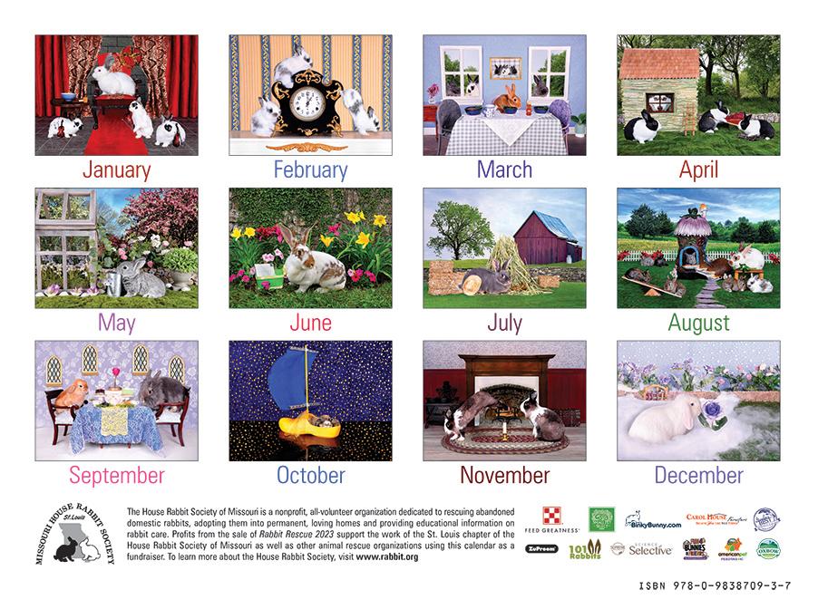 rabbit rescue calendar cover